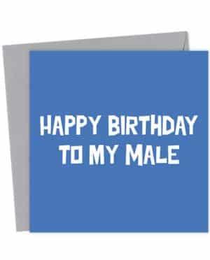 Happy Birthday to my Male