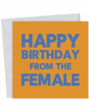 Happy Birthday from the Female - Birthday Card