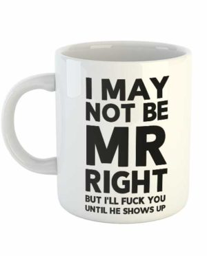 I may not be Mr Right but I'll fuck you until he shows up Mug