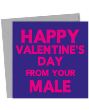 Happy Valentine's Day from your Male